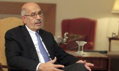 الدكتور محمد البرادعي - رويترز